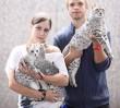 Najpiękniejsze koty przyjadą do Warszawy!