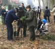 Dyplomaci posadzili 1500 drzew na Woli (ZDJĘCIA)