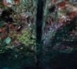 Przestrzeń kosmiczna i podwodne monumenty. Niezwykła wystawa w CSW [WIDEO]
