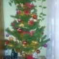 Świąteczne choinki czytelników WawaLove.pl (ZDJĘCIA)