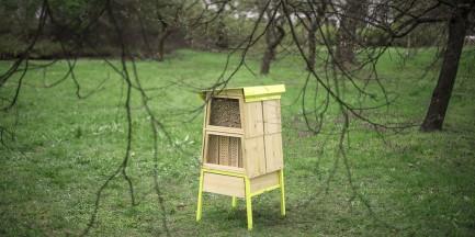 """Przy Sejmie stanęło 10 uli. """"Chcemy zwrócić uwagę na problem ginięcia pszczół"""""""