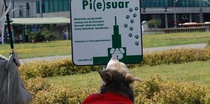 Psie WC w centrum miasta. Powstały pierwsze pie(s)uary