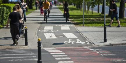 Wymienią słupki na ścieżkach rowerowych. ZDM: będą z masy elastycznej