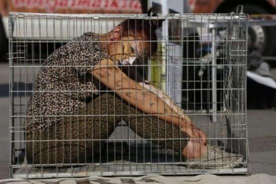 """Fot. Aktywiści podczas akcji ulicznej """" Cyrk bez Zwierząt """" Fot., Dawid Chalimoniuk/Agencja Gazeta"""