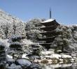 Za darmo: nieznane zakątki Japonii