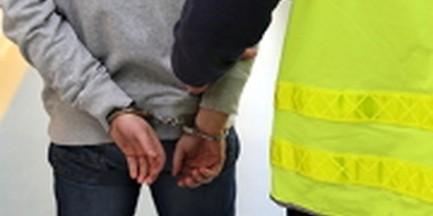 Pedofil zatrzymany. Miał kontakt seksualny z nieletnią