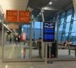 Incydent na Lotnisku Chopina. Larwy motyla przyczyną przerwania startu
