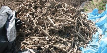Nadarzyn. Robotnicy znaleźli 3000 ludzkich kości podczas budowy drogi