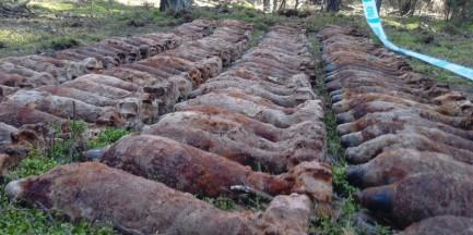 Arsenał w lesie na Mazowszu - ponad 200 kg materiałów wybuchowych [WIDEO]