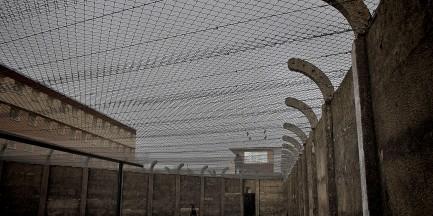 W więzieniu na Białołęce zatruli się dopalaczami. Sprawę bada prokuratura